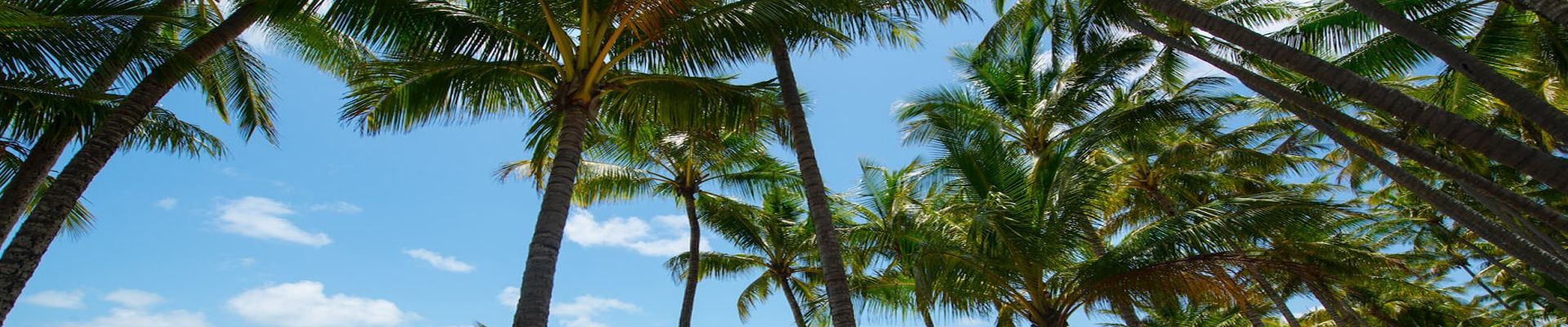 Palm Cove Cairns Holiday Apartment Accommodation FAQs